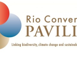 Rio Conventions Pavilion Project Page & CEIM Press Release feature